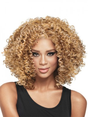 Sophisticated Culry Synthetic Wig